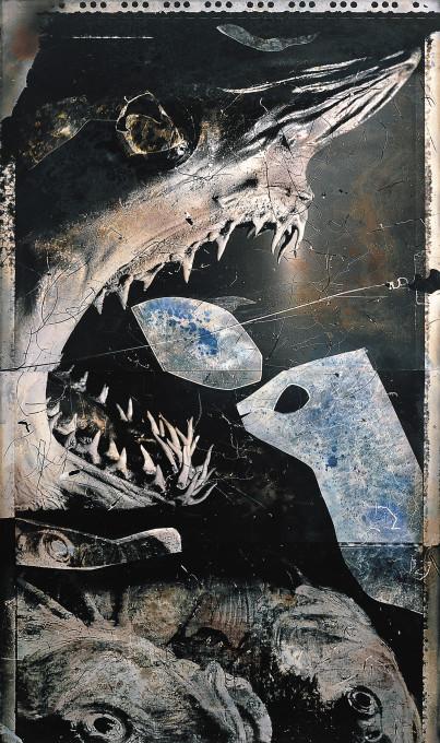 Joan Fontcuberta, Laurus oyrinchus, iz serije Frottograms, 1988–89.