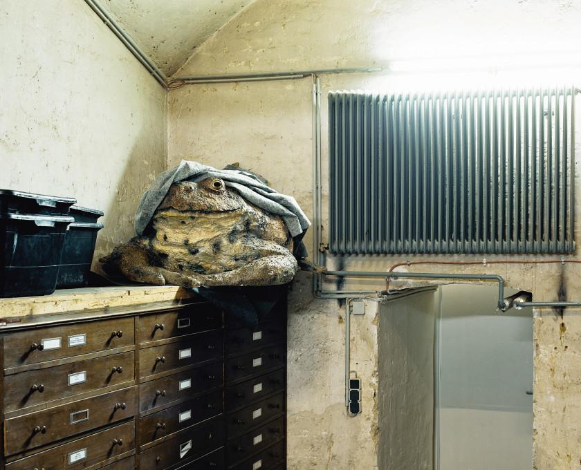 Klaus Pichler, Okostnjaki v omari (Skeletons in the Closet).