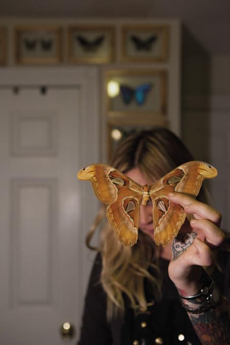 Montse Morcate, Amber Maykut se ukvarja s tradicionalno in antropomorfično taksidermijo.