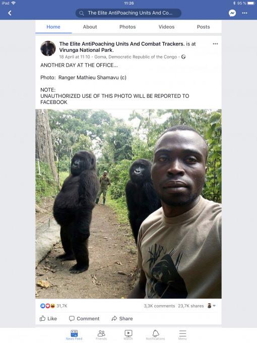 """Mathieu Shamavu, Facebook objava z naslovom """"Še en dan v pisarni ..."""" https://www.facebook.com/474596272672703/photos/rpp.4745962726727 03/1552236504908669/?type=3&theater. Zajem zaslona Panos Kompatsiaris."""