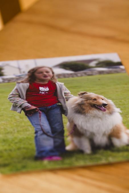 Slika 4: Galina fotografija psa. Gala: »Ko je naš pes umrl, smo pregledali arhiv fotografij in se odločili, da to fotografijo nekaj časa postavimo nad kamin.«