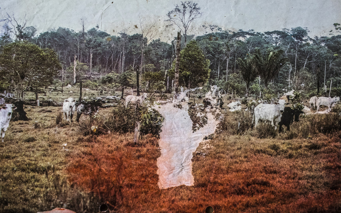 Gabriel Uchida, Iputawaea, 80 x 50 cm, fotografska povečava na bambusov papir, 2017.