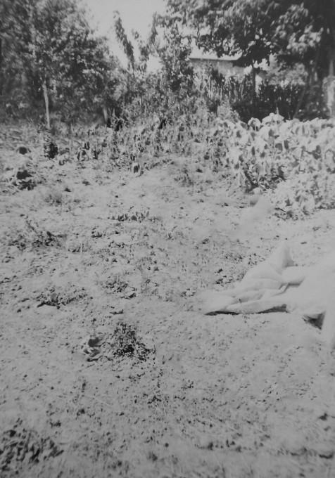 Onur Ciddi: Veliki izlet - Nikogaršnje ozemlje.
