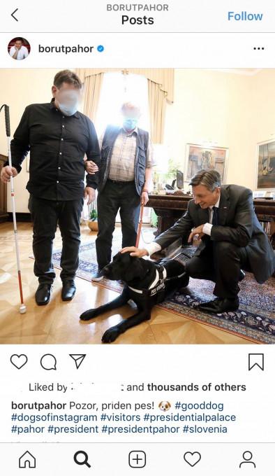 Borut Pahor - Psicki #17 R