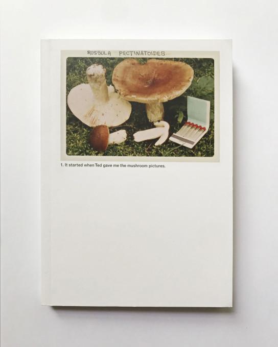 The Mushroom Collector, broširana izdaja, 2014.