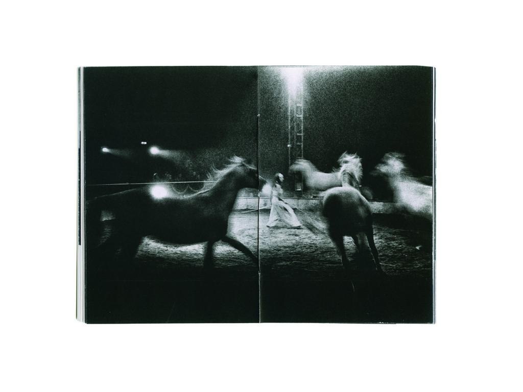 Jože Suhadolnik, Circus Akina Books, zbirka Eclisse, mehka vezava; naklada 100, format 19.7 x x13.8 cm cm, 28 strani, London, 2013.