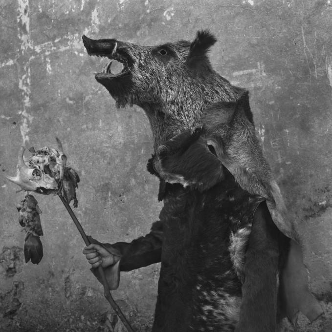 A 'Zarramaco'. Wild boar, carnival 'del gallo' of Mecerreyes, Spain, 2019.