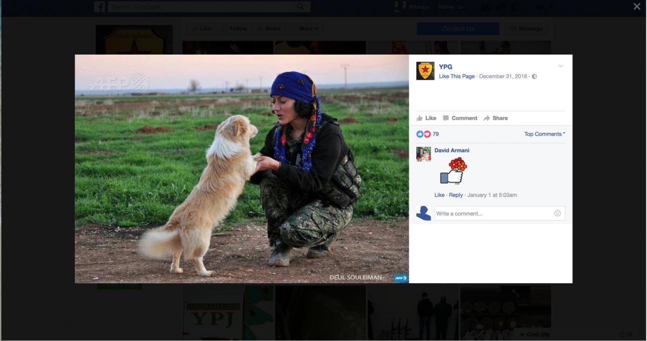 YPG Facebook. Zajem zaslona 08.01.2017 ob 11.20.27 uri.