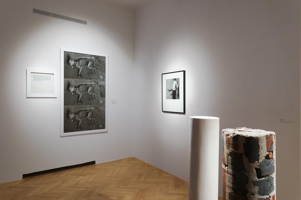 Zbirka Lah Contemporary v Mestnem muzeju. Foto: Andrej Peunik. Z dovoljenjem Mestnega muzeja.